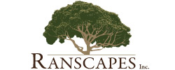Ranscapes